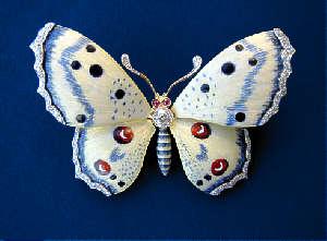 [Grossbild Weisse Schmetterlings Brosche #5]
